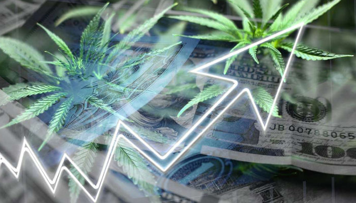 Aurora Cannabis first-quarter earnings are better than forecasted