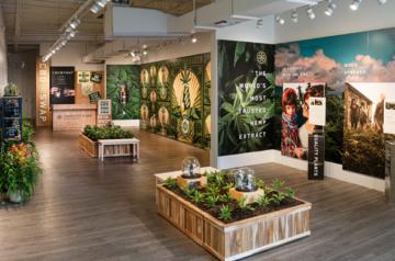 Charlotte's Web launches CBD pop-up store in Miami