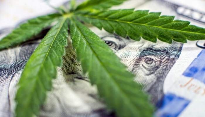 Liberty Health Sciences is one of the few cannabis companies turning a profit