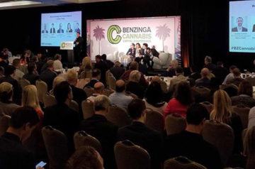 Canopy Rivers CEO participates in Benzinga cannabis industry conference