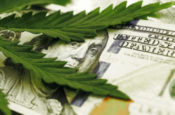 Canopy Rivers to provide joint venture company with over $7 million in DIP loans