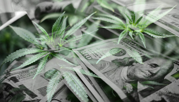 Canopy Growth lends $20 million to TerrAscend subsidiary