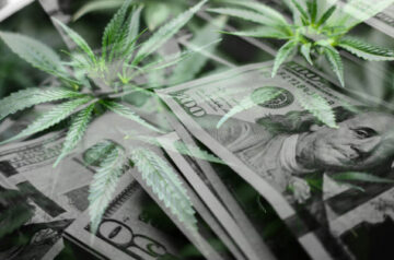 Canopy Growth provides update as it looks to purchase more TerrAscend stock