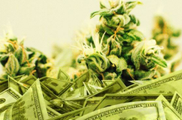 KushCo saw improvements as 2020 drew to a close