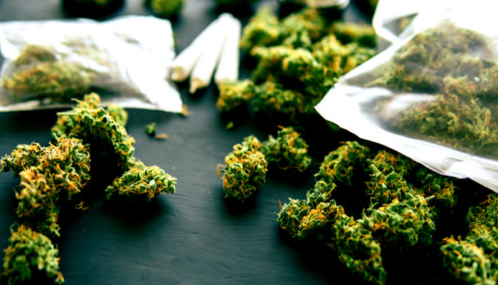 Liberty Health Sciences launches 29th dispensary in Florida