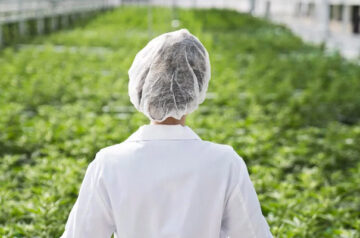 Aphria continues to strengthen its global position in the cannabis industry