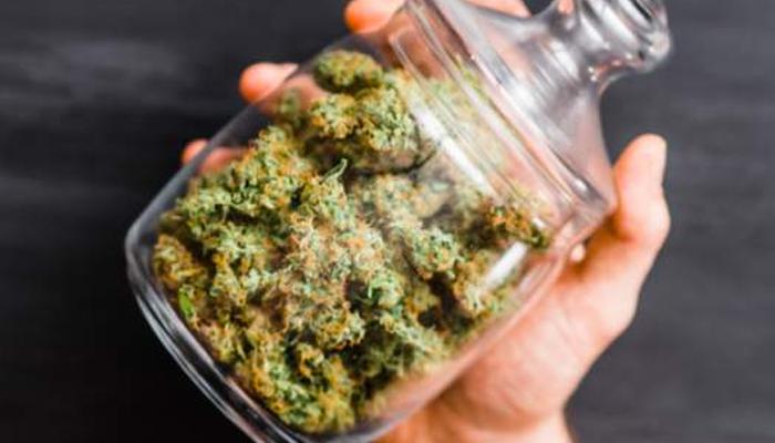 Aurora Cannabis files new preliminary base shelf prospectus