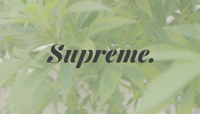 Supreme Cannabis launches new At-the-Market equity program