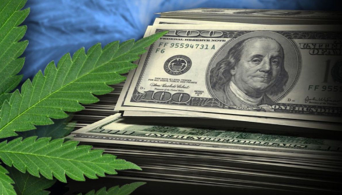 Tilray releases latest financial report, showing positive growth