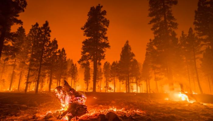 Aurora Cannabis forced to retreat from marijuana farm over wildfires