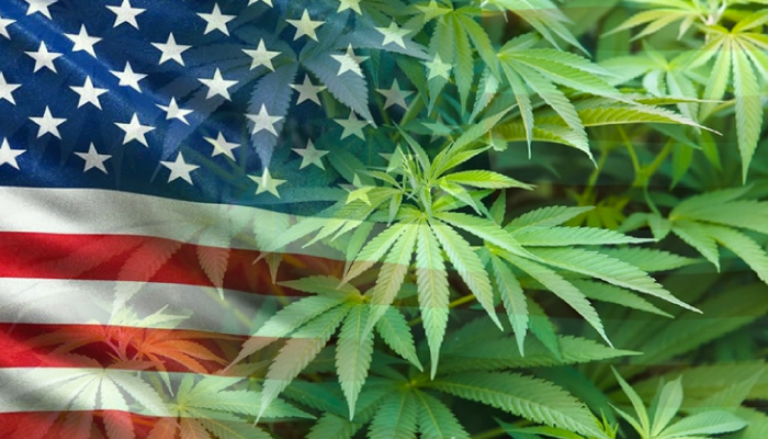Canopy Growth continues to prepare for US expansion