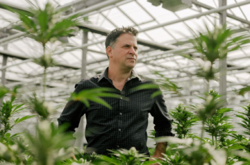 TerrAscend CEO Jason Wild discusses his rise in the cannabis industry